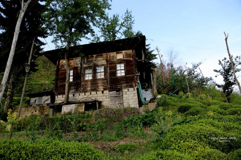Çayelili sanatçı Resul Çelik'ten köy manzaraları