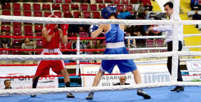 Trabzonlu boksörler 5 altın madalya kazandı