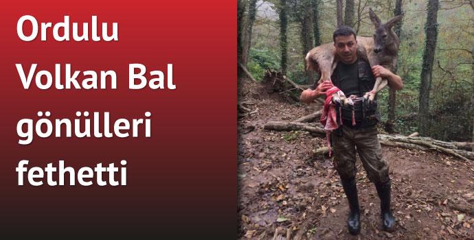 Yaralı karacayı 3 kilometre sırtında taşıdı