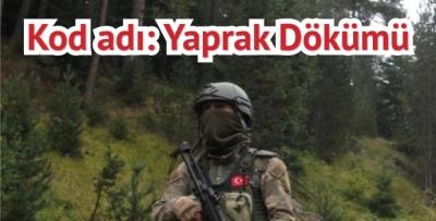 Karadeniz'den PKK'yı kazıyacak operasyon