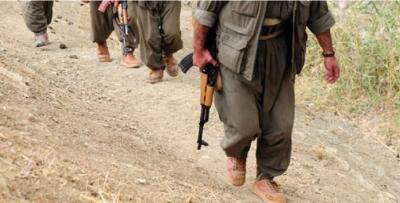 PKK takviye 8 terörist daha gönderdi