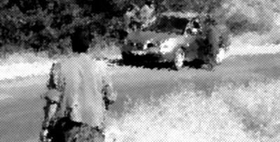 Teröristler Alucra'da bir aracı gasp etti